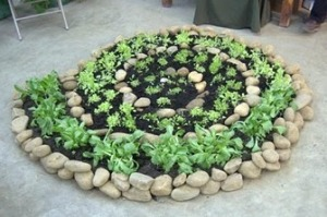 Benefits of Spiral Herb Garden Design